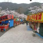 函館公園 石張舗装